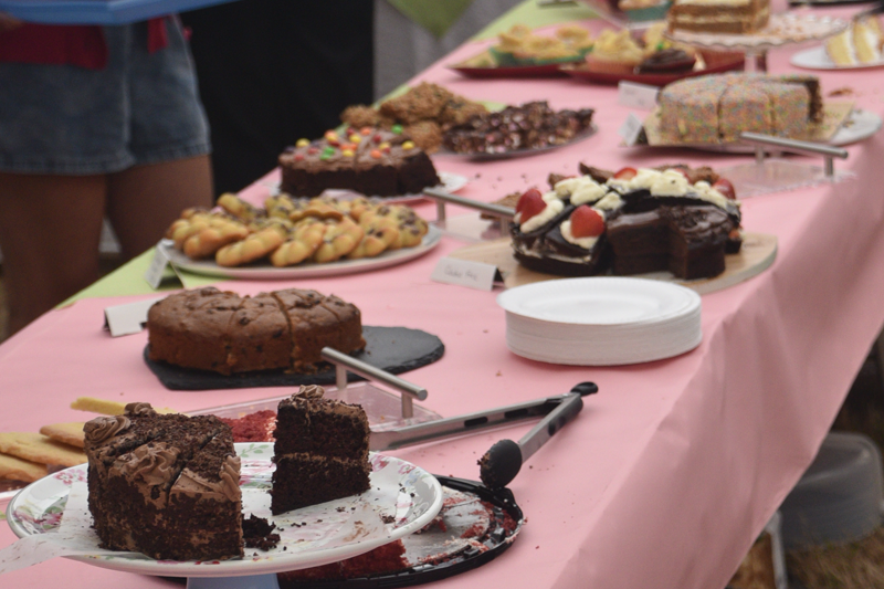 Cakes available at the tea tent
